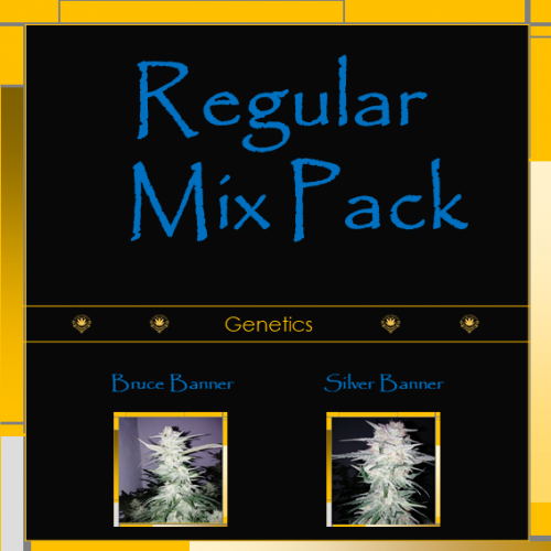 Regular Mix Pack